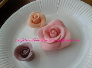 trandafiri1
