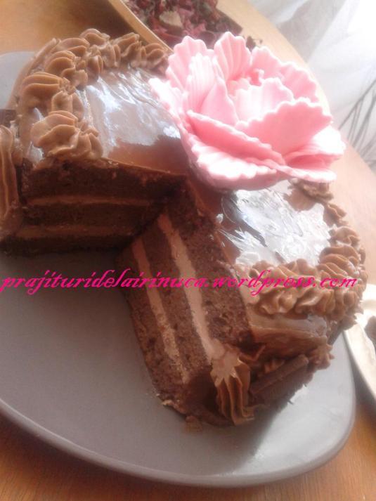 tort amandina6